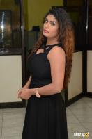 Radhika at Gandaberunda Audio Launch (2)