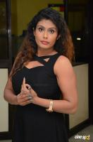 Radhika at Gandaberunda Audio Launch (5)