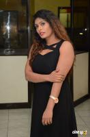 Radhika at Gandaberunda Audio Launch (8)