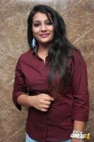 Chithirame Solladi Movie Audio Launch (12)