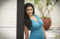 Pooja Kumar Latest PhotoShoot (5)