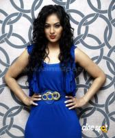Nikesha Patel  actress photos,pics (1)