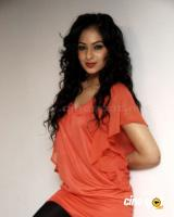 Nikesha Patel  actress photos,pics (10)