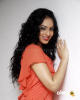 Nikesha Patel  actress photos,pics (5)