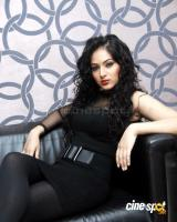 Nikesha Patel  actress photos,pics (6)