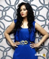 Nikesha Patel  actress photos,pics (8)