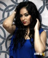 Nikesha Patel  actress photos,pics (9)