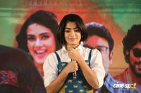 Devadas Movie Success Meet (14)
