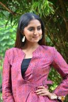 Reba Monica John at Jarugandi Press Meet (10)