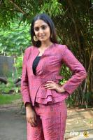 Reba Monica John at Jarugandi Press Meet (7)