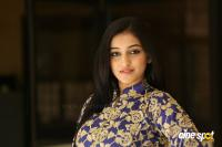 Mouryani at Law Movie Success Meet (12)