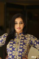 Mouryani at Law Movie Success Meet (14)