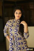 Mouryani at Law Movie Success Meet (22)