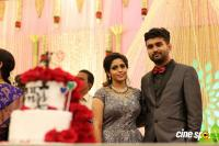 Ramesh Khanna Son Jashwanth Kannan Priyanka Wedding Reception Stills (104)