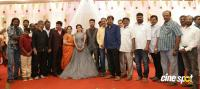 Ramesh Khanna Son Jashwanth Kannan Priyanka Wedding Reception Stills (13)