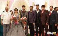 Ramesh Khanna Son Jashwanth Kannan Priyanka Wedding Reception Stills (39)