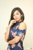Meghna Mandumula at Bilalpur Police Station Press Meet (20)