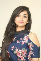 Meghna Mandumula at Bilalpur Police Station Press Meet (21)