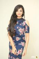 Meghna Mandumula at Bilalpur Police Station Press Meet (22)