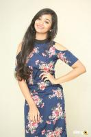 Meghna Mandumula at Bilalpur Police Station Press Meet (26)