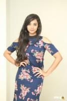 Meghna Mandumula at Bilalpur Police Station Press Meet (29)