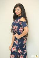 Meghna Mandumula at Bilalpur Police Station Press Meet (3)