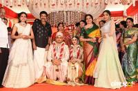 Dr Rajasekhar Nephew Karthik Wedding Photos