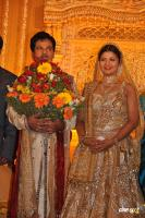 Rambha reception Photos Wedding Marriage Reception Photos (3)
