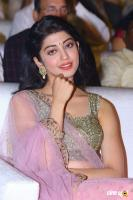 Pranitha Subhash at NTR Kathanayakudu Audio Launch (19)