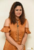 Shilpa Chakravarthy at Peta Movie Audio Launch (41)