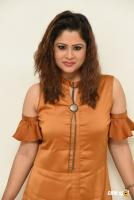 Shilpa Chakravarthy at Peta Movie Audio Launch (42)