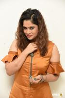 Shilpa Chakravarthy at Peta Movie Audio Launch (46)