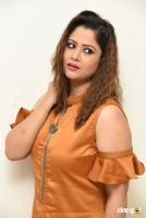 Shilpa Chakravarthy at Peta Movie Audio Launch (50)