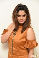 Shilpa Chakravarthy at Peta Movie Audio Launch (51)