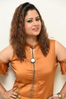 Shilpa Chakravarthy at Peta Movie Audio Launch (53)