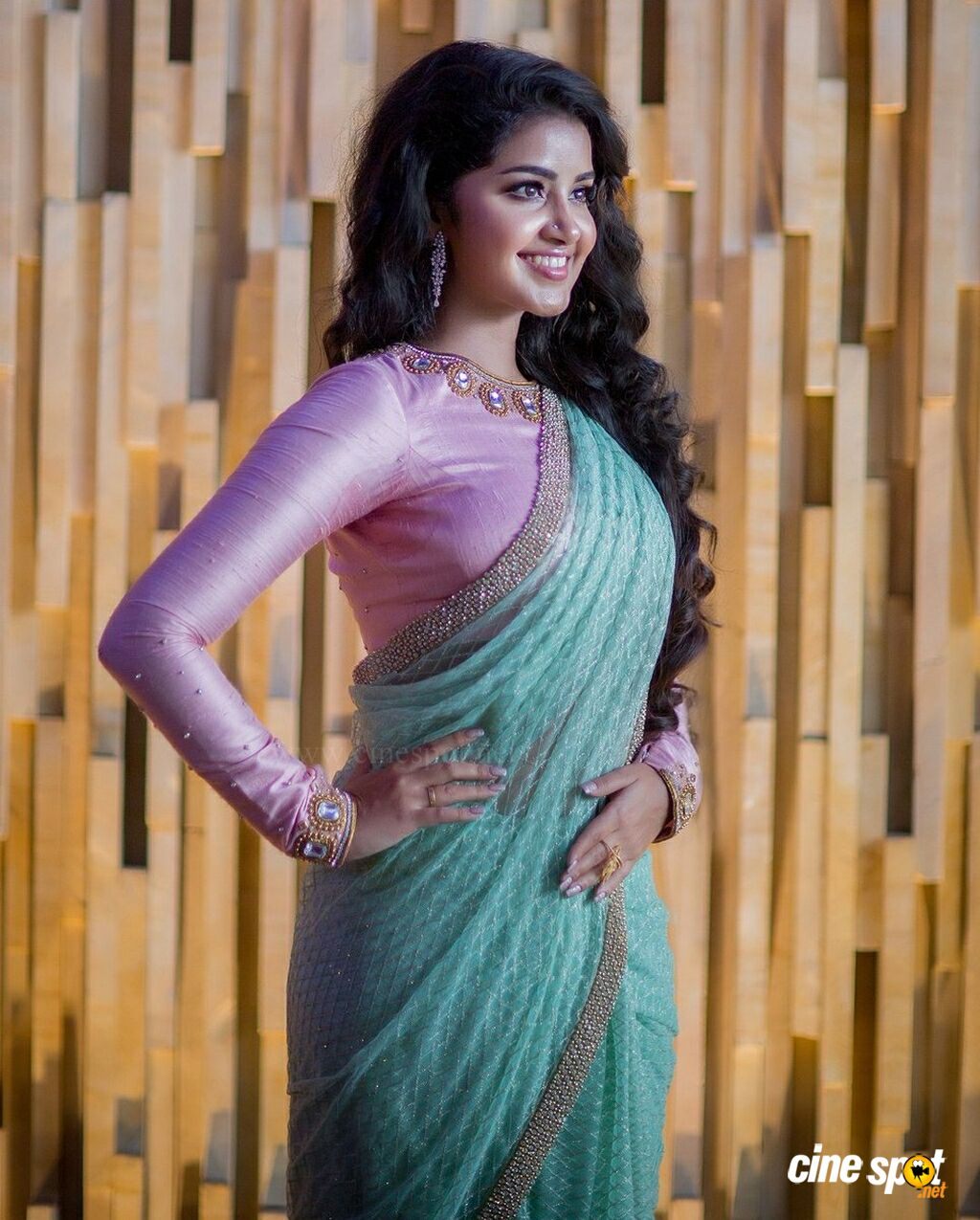 Anupama Parameswaran New PhotoShoot (4)