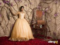 Actress Riythvika Diadem Exclusive Gallery (4)