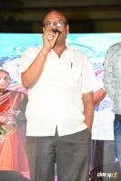 Nene Mukyamantri Movie Pre Release Event (39)