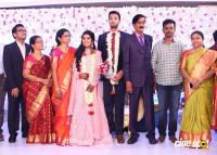 Manobala Son Harish Priya Wedding Reception (75)