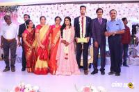 Manobala Son Harish Priya Wedding Reception (77)