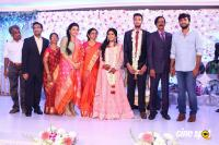Manobala Son Harish Priya Wedding Reception (80)