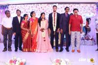Manobala Son Harish Priya Wedding Reception (83)