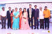 Manobala Son Harish Priya Wedding Reception (84)