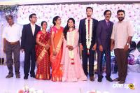 Manobala Son Harish Priya Wedding Reception (86)