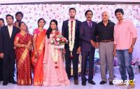 Manobala Son Harish Priya Wedding Reception (90)