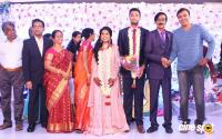 Manobala Son Harish Priya Wedding Reception (99)