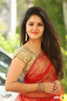 Gayathri Suresh at Hero Heroine Teaser Launch (12)
