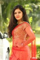 Gayathri Suresh at Hero Heroine Teaser Launch (41)