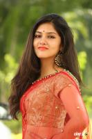 Gayathri Suresh at Hero Heroine Teaser Launch (42)