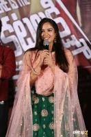 Where Is The Venkata Lakshmi Audio Launch (39)